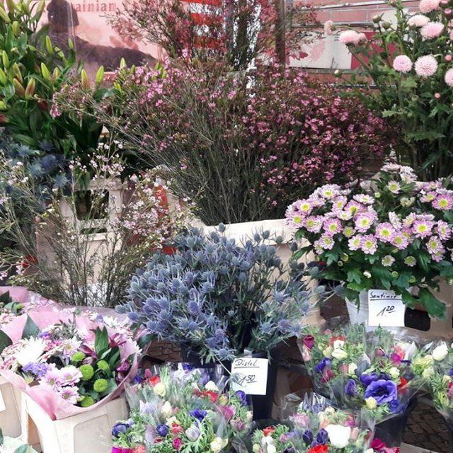 Pick your favorite flower for Valentines day! Schnapp Dir diehellip