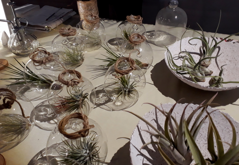 Green Market Berlin, Till Airplants